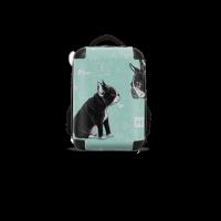 bag 双肩背包18寸
